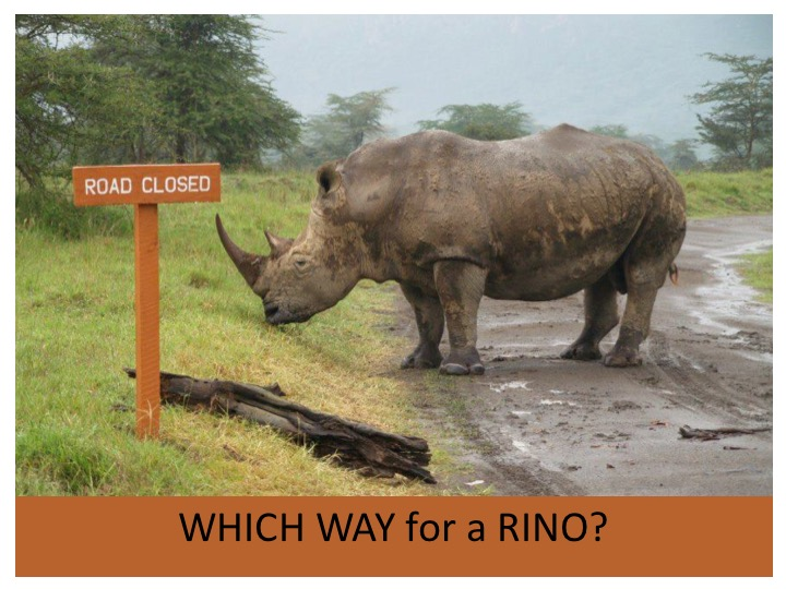 Which Way Rhino